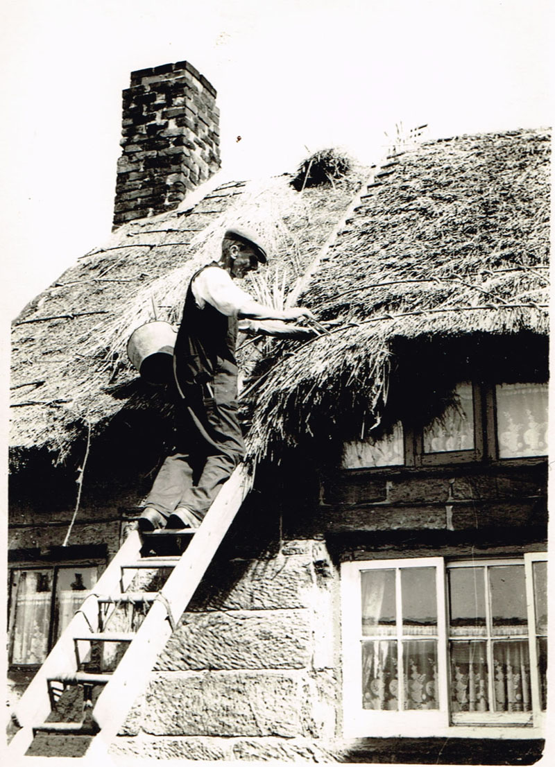 Thatching the Ivy Cottage roof