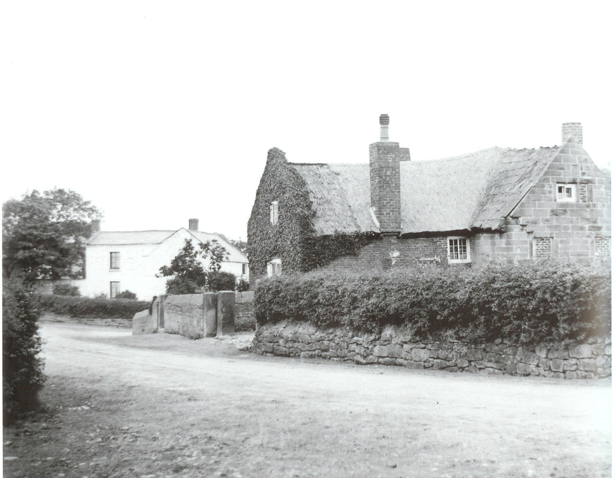 old Ivy Cottage